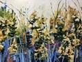 betwixed-the-wild-yarrow-flowers